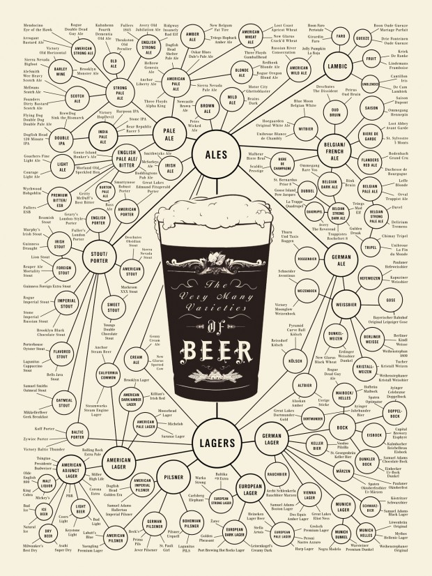 Varieties of Beer Infographic