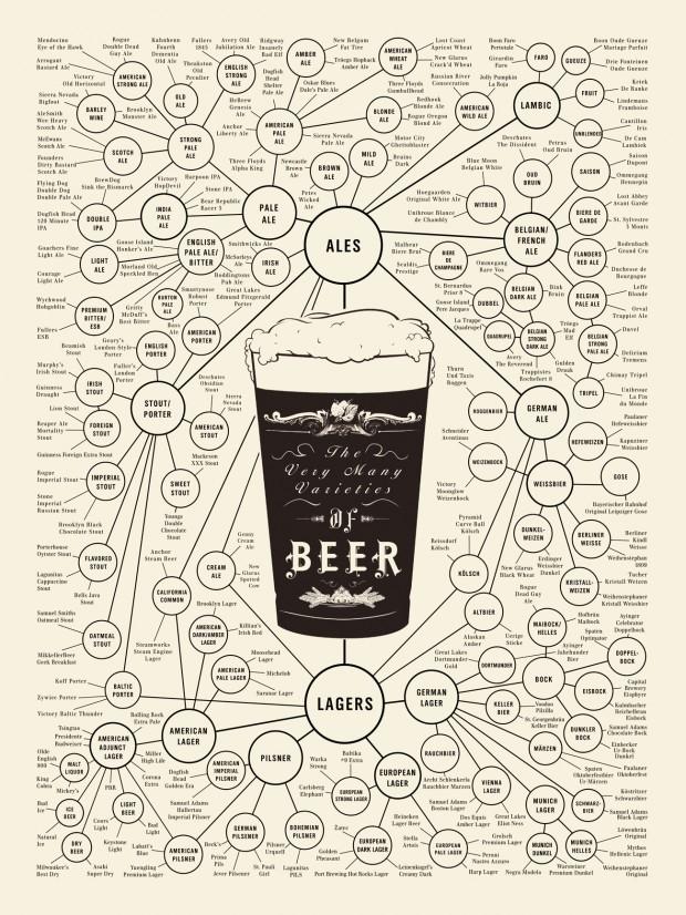 Varieties of Beer Infographic